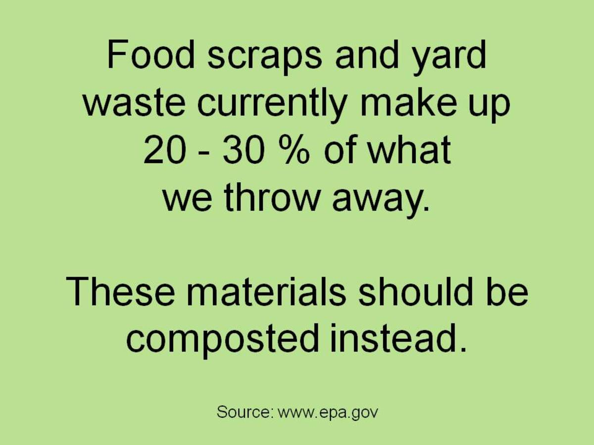 With the right tools and information, composting at work can be as easy as composting at home.