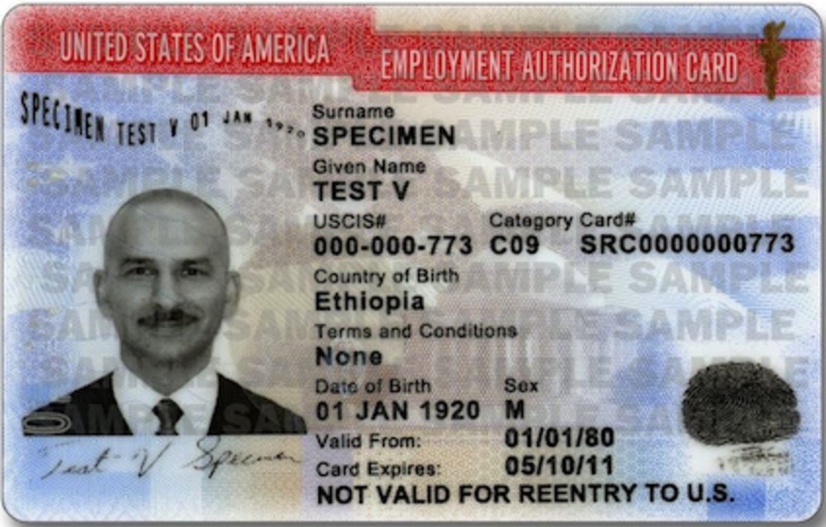 Employment Authorization Card