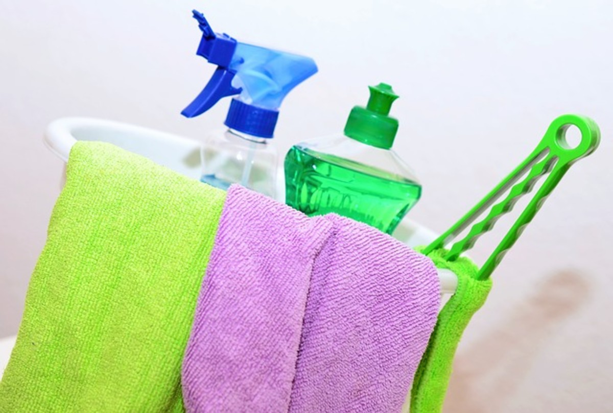 aspergillus-a-kitchen-cloth-and-bathroom-mold