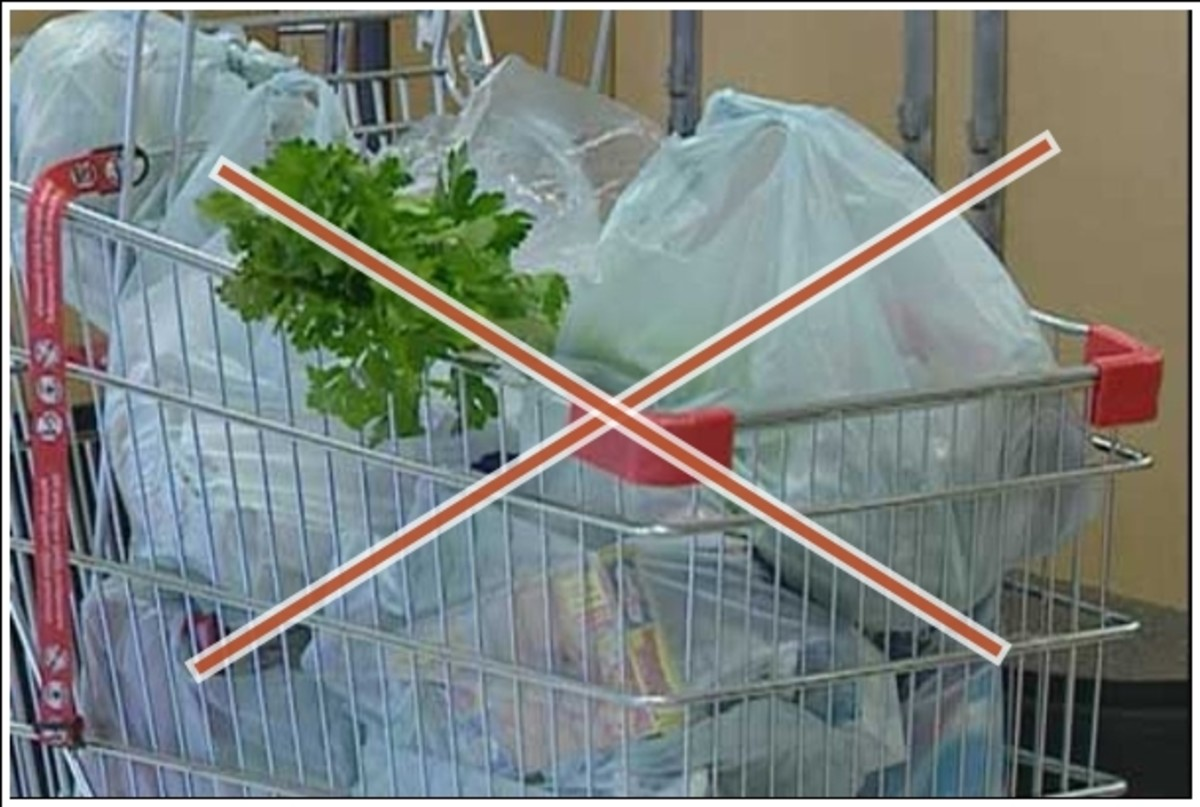 It is such an irresponsible act to be carrying single-use plastic bags around.