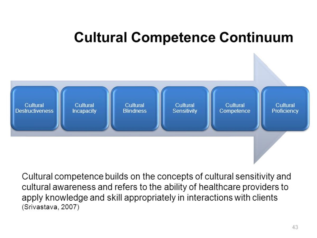 A cultural competence continuum adapted from The Healthcare Professionals Guide to Clinical Cultural Competence by Rani Srivastava