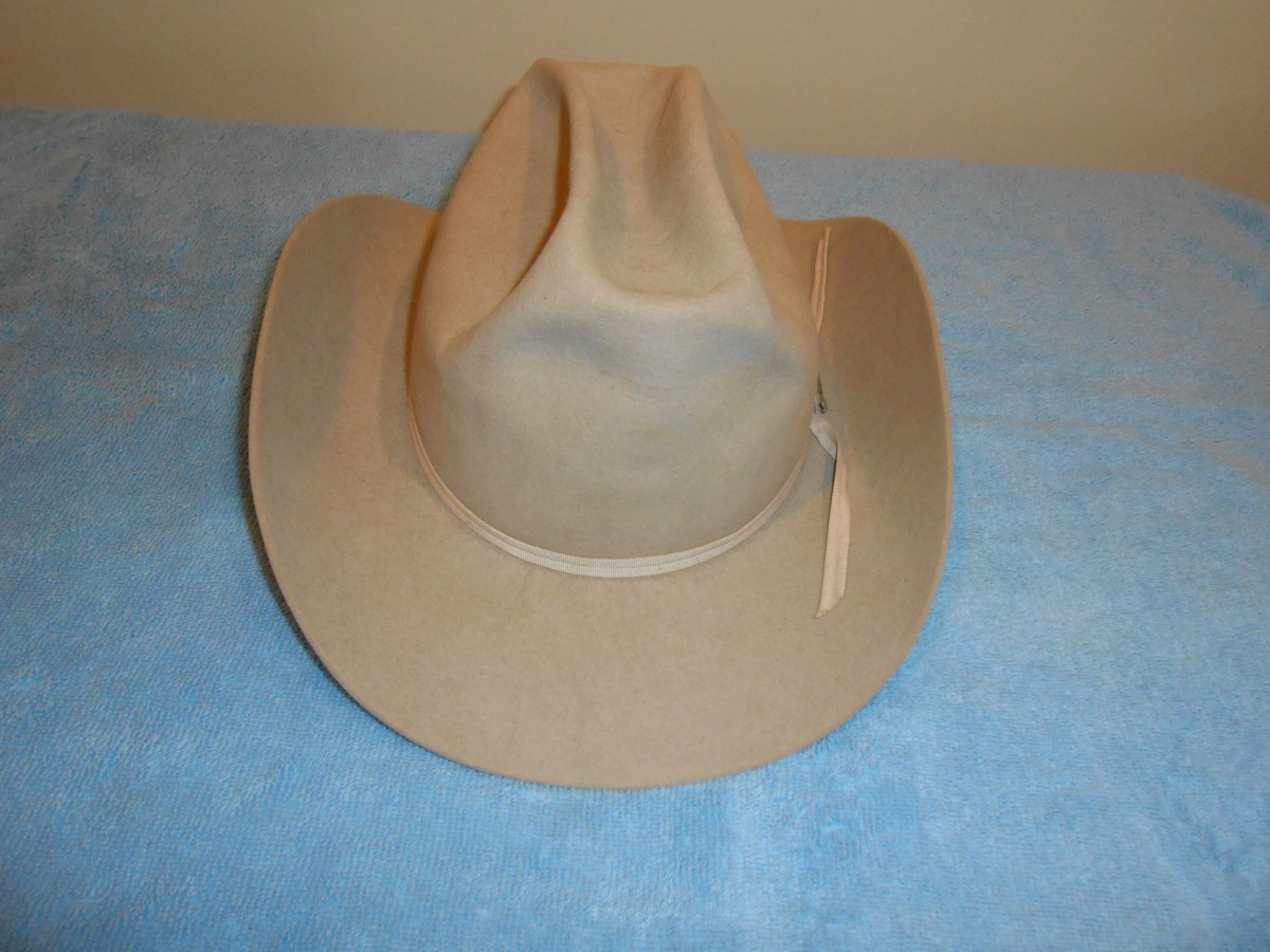 Stetson cowboy hat bought at a local thrift store for 25 cents!