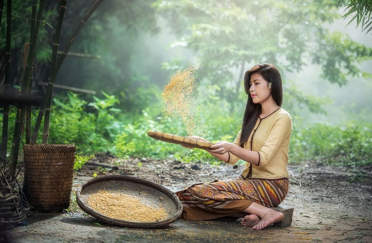 Rice. Cheap, plentiful, tasty.