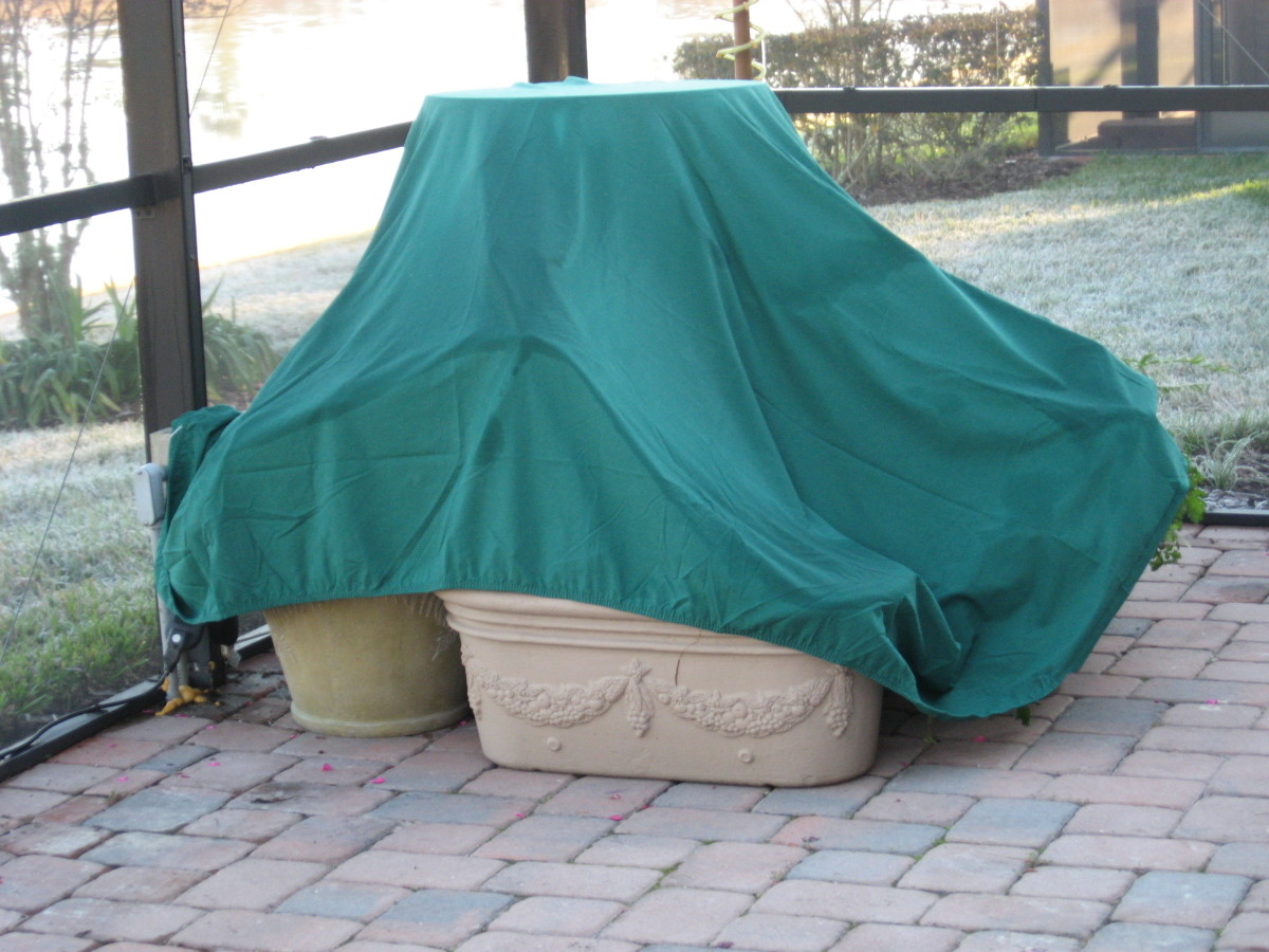 I keep the old stained, torn sheets folded in my garden storage bin. When a frost is predicted for Central Florida, I pull the sheets out to protect my plants.