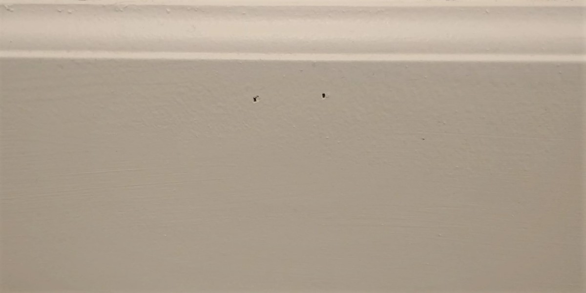 This is my baseboard!
