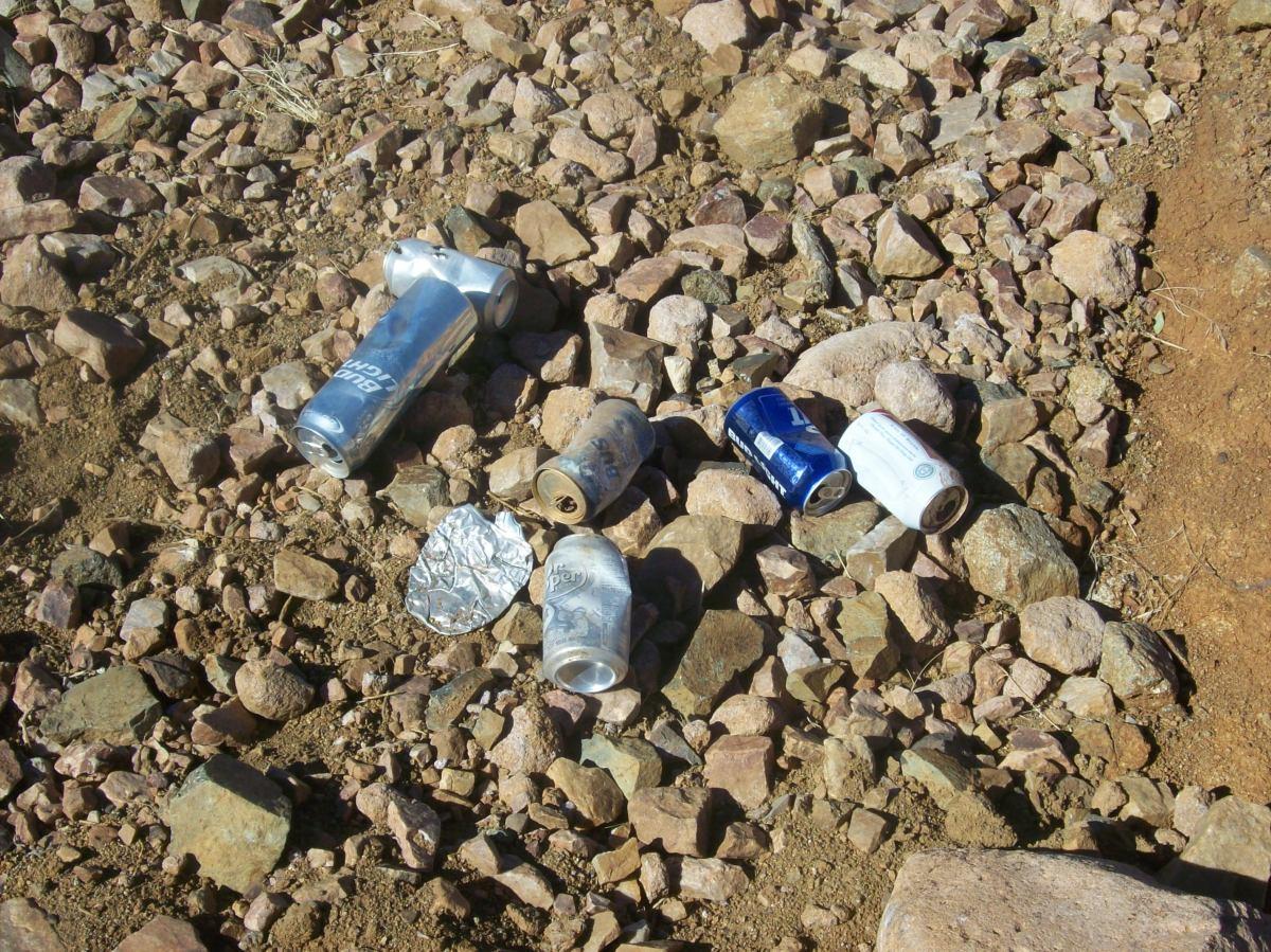 沿途收集回收物是有利可图的。