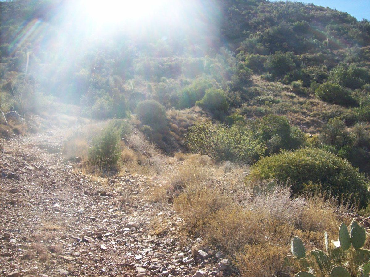 在路径上的叉子 - 右径导致山坡上的污垢 - 左上升了一座山