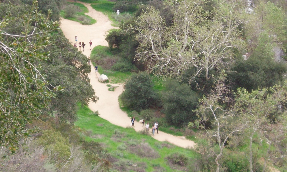This is a popular hiking/walking trail near where I live. It's good exercise and fun walking on the trail, but walking in town is good exercise too. Instead of looking at nature, I'm looking at store windows.