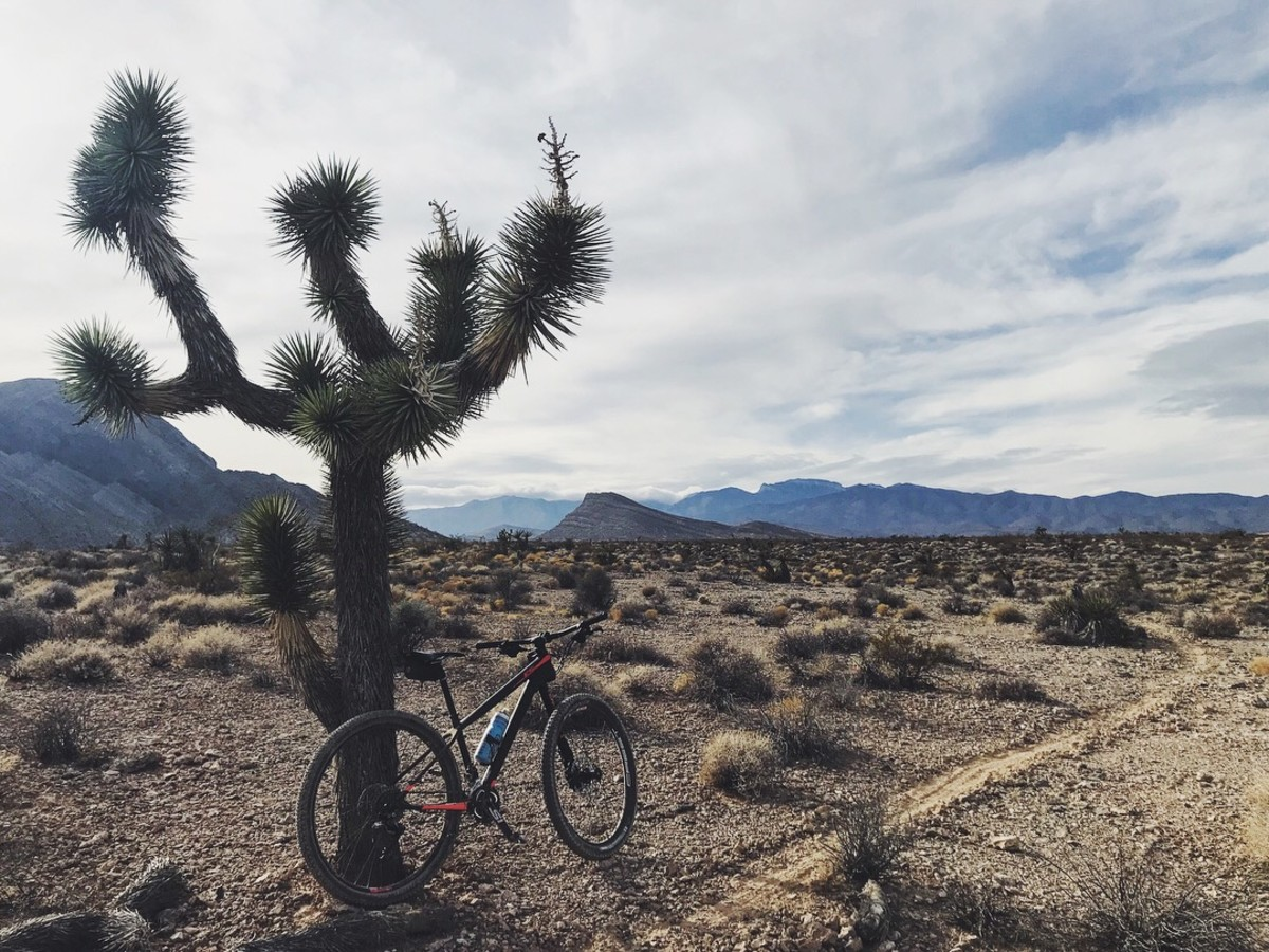 Mountain biking in northwest Las Vegas in January.
