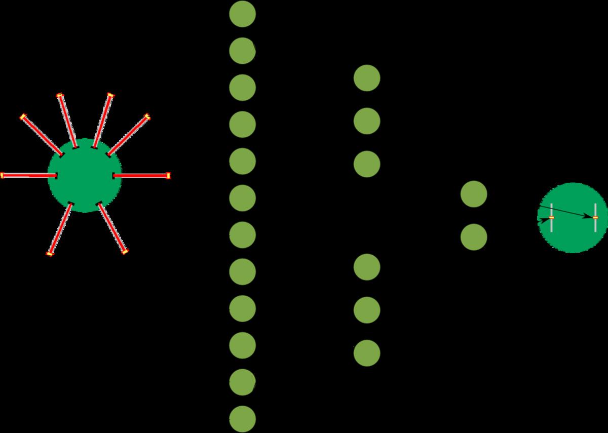 在机器学习或人工智能职位的面试中,可能会遇到关于构建神经网络的问题。