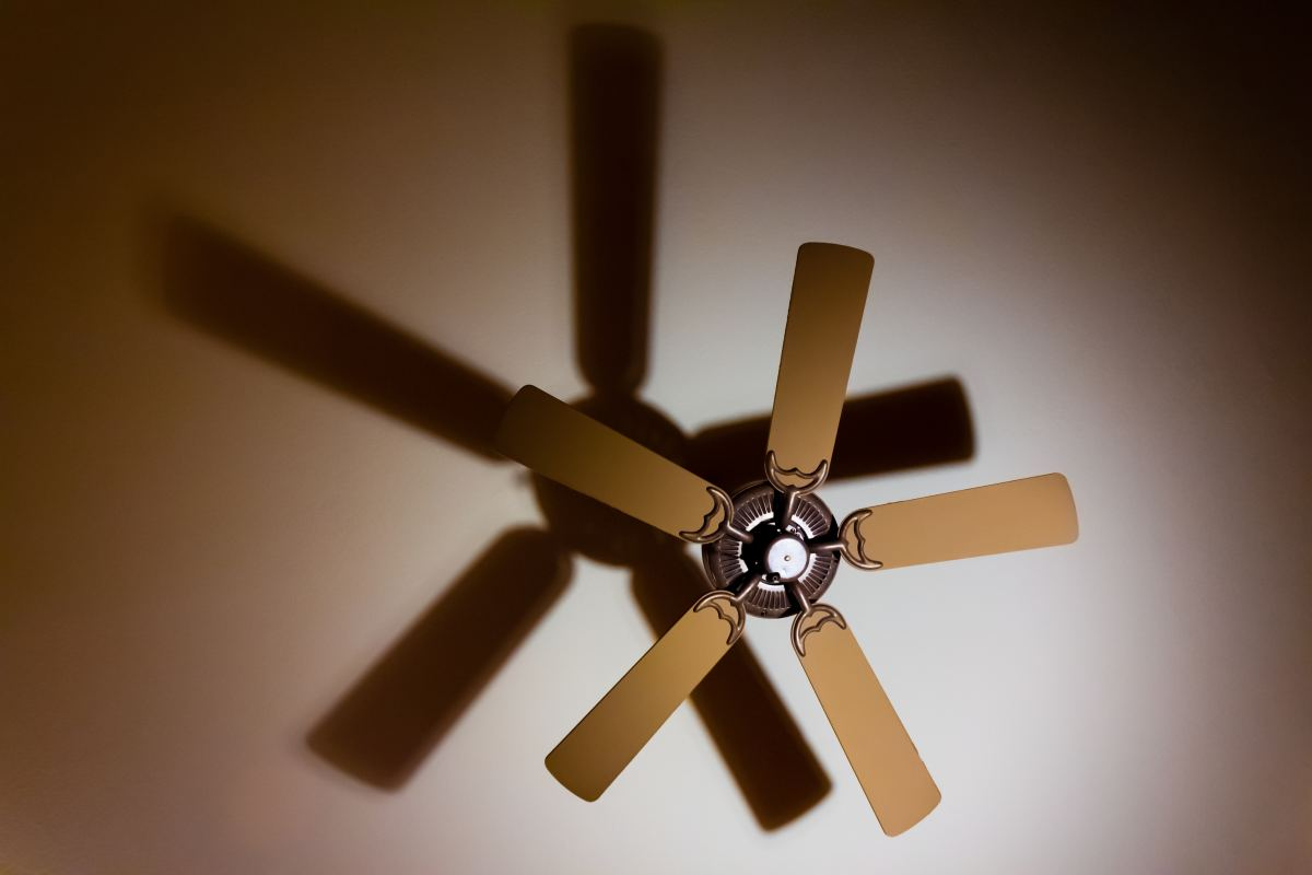 Ceiling fans are notoriously temperamental.