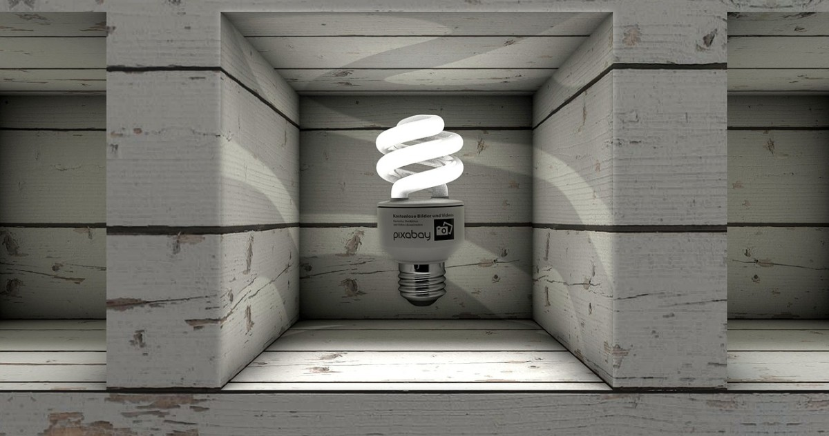 Bright ideas fight nicely inside a niche