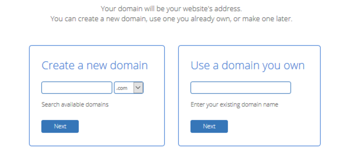 This is where you enter your domain name.