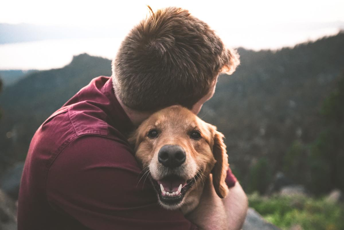 Make your audience as happy as your dog makes you. (I swear this is the last dog analogy.)