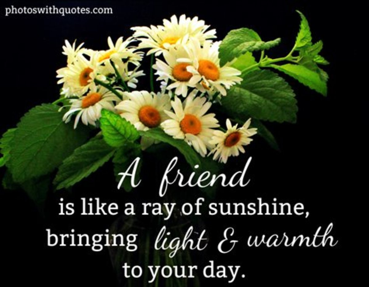 Friendship adds sunshine to your day.