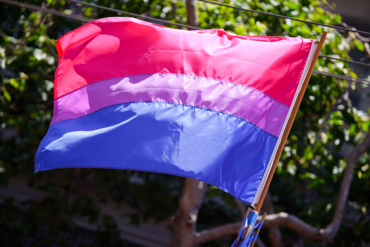 The bisexual pride flag by Peter Salanki