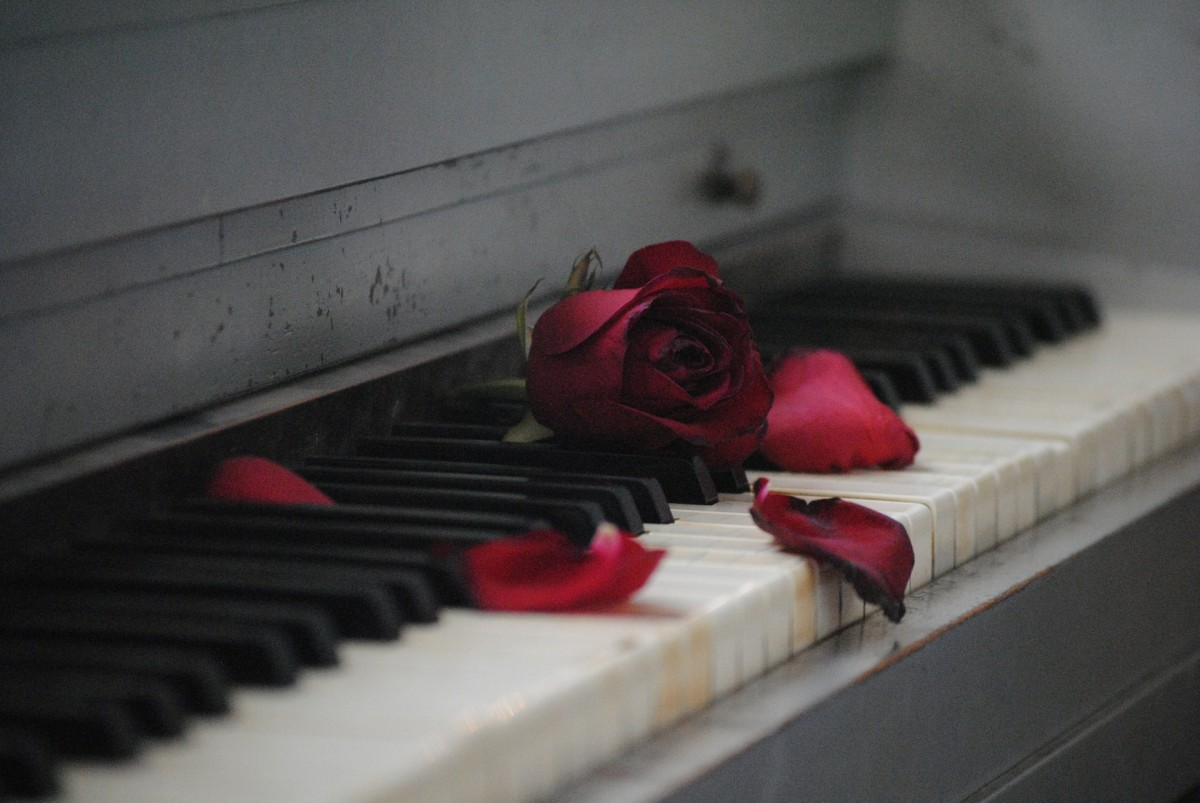 Do you feel like it's useless to look for love again? Have you resigned yourself to playing sad love songs on the piano?