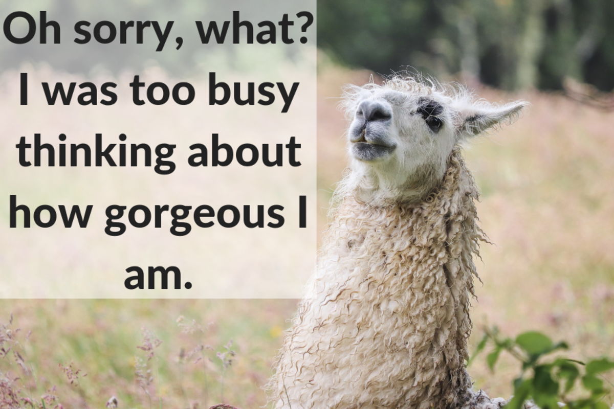 100 Funny and Clever Replies to Compliments   PairedLife
