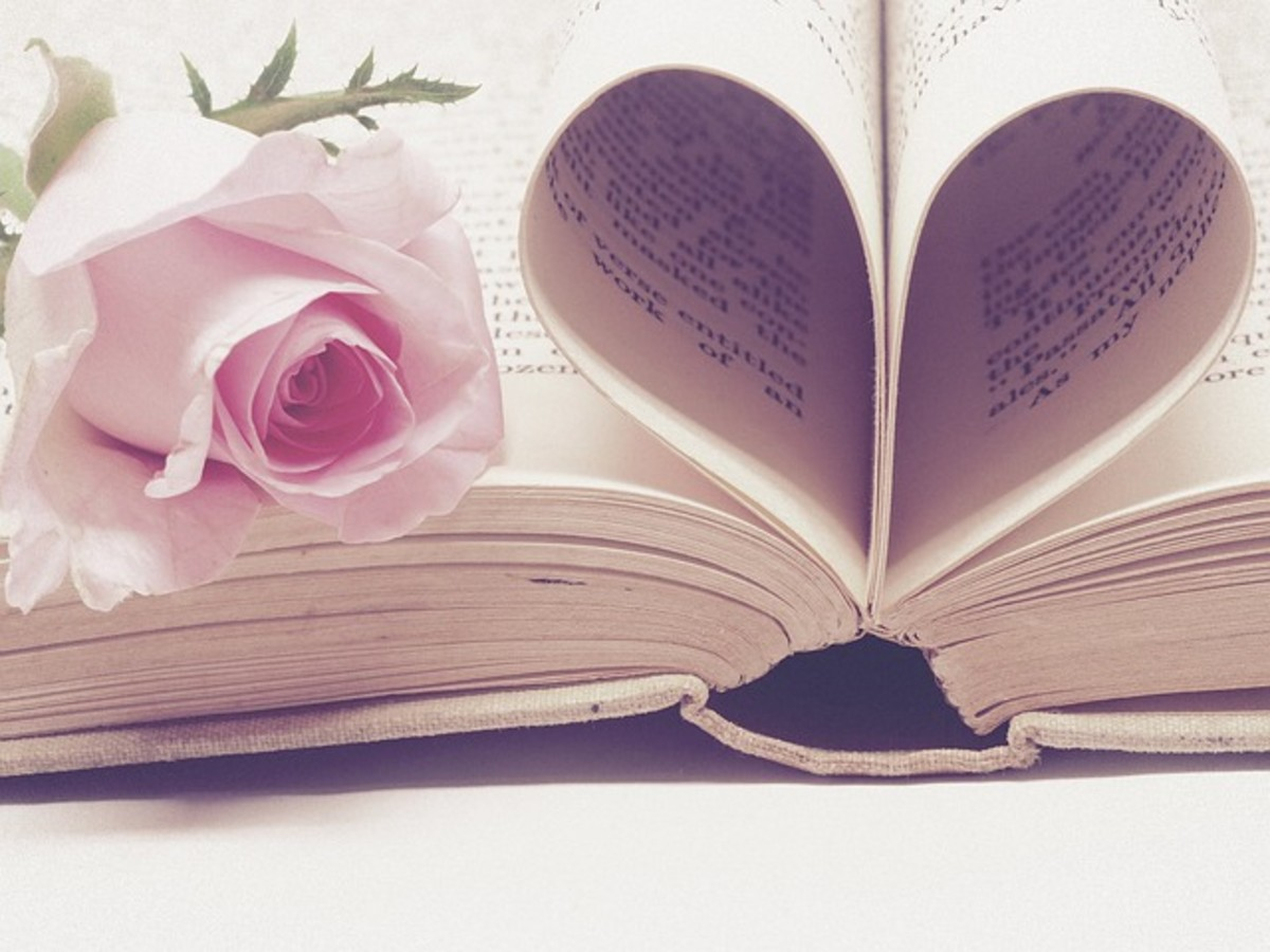 Love Book and Rose