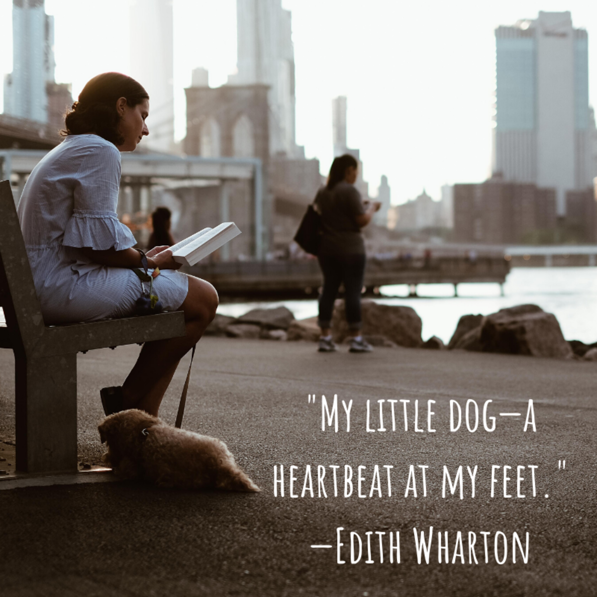 """My little dog—a heartbeat at my feet."" —Edith Wharton"