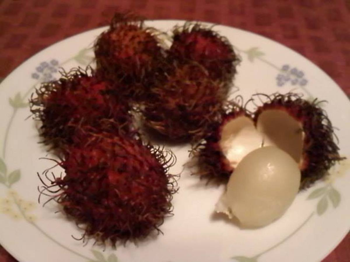 Rambutan fruits.