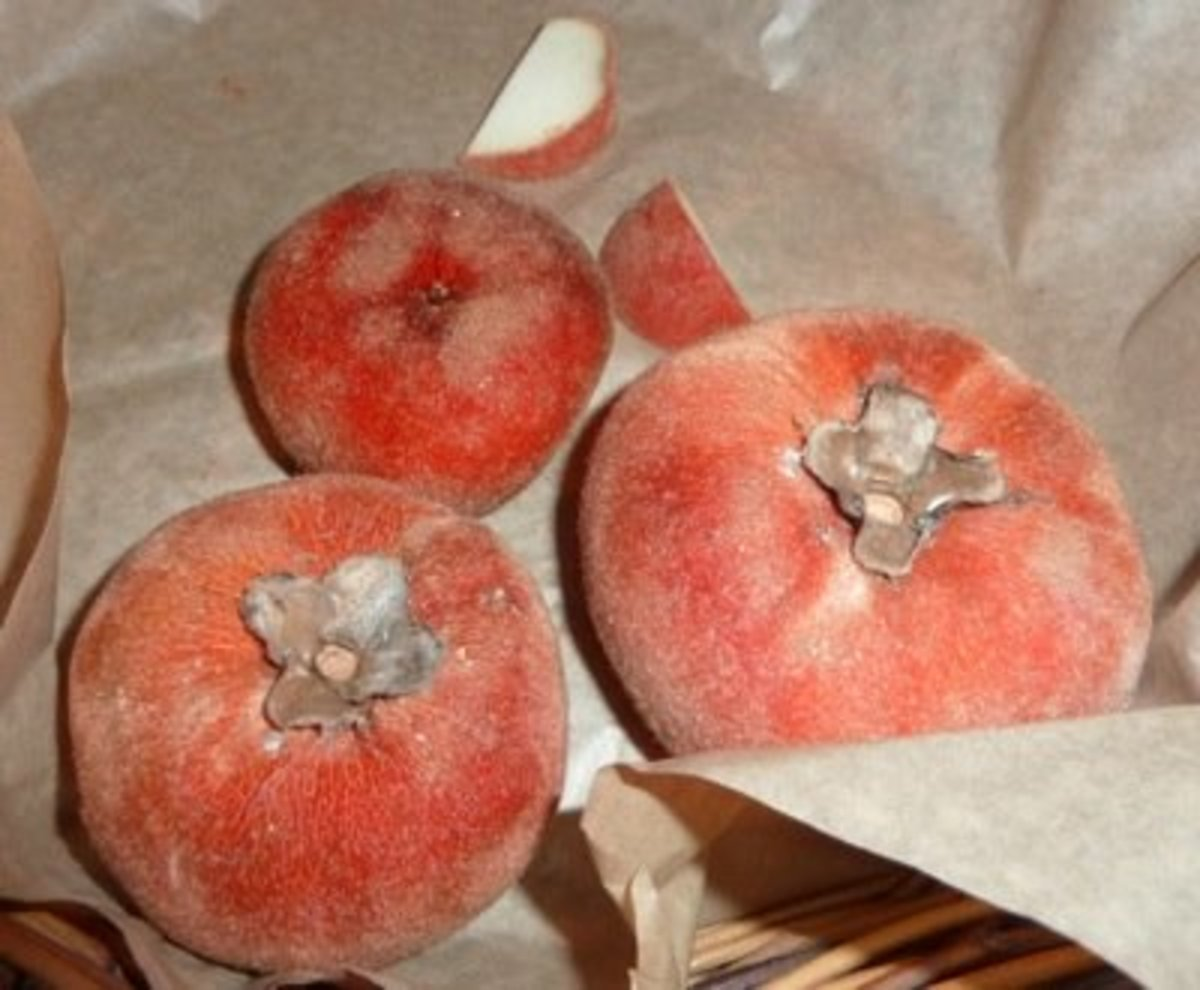 Velvet apples or mabolo fruits