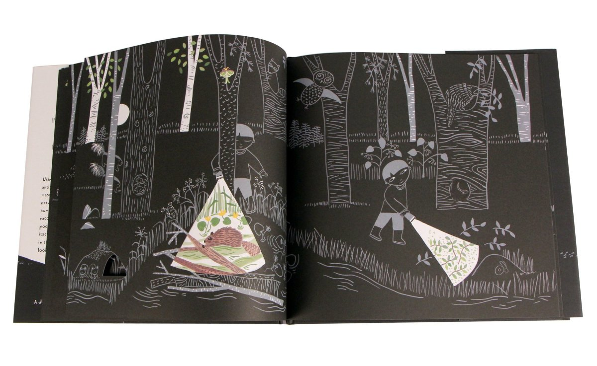 """Flashlight"" - Very cool and unusual wordless book for kids."
