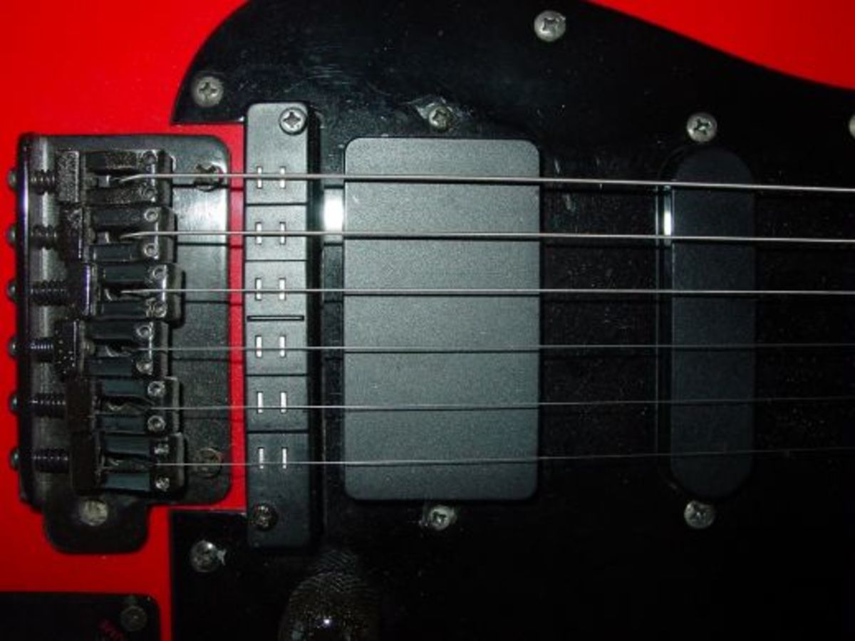 Hexaphonic Pickup Detail