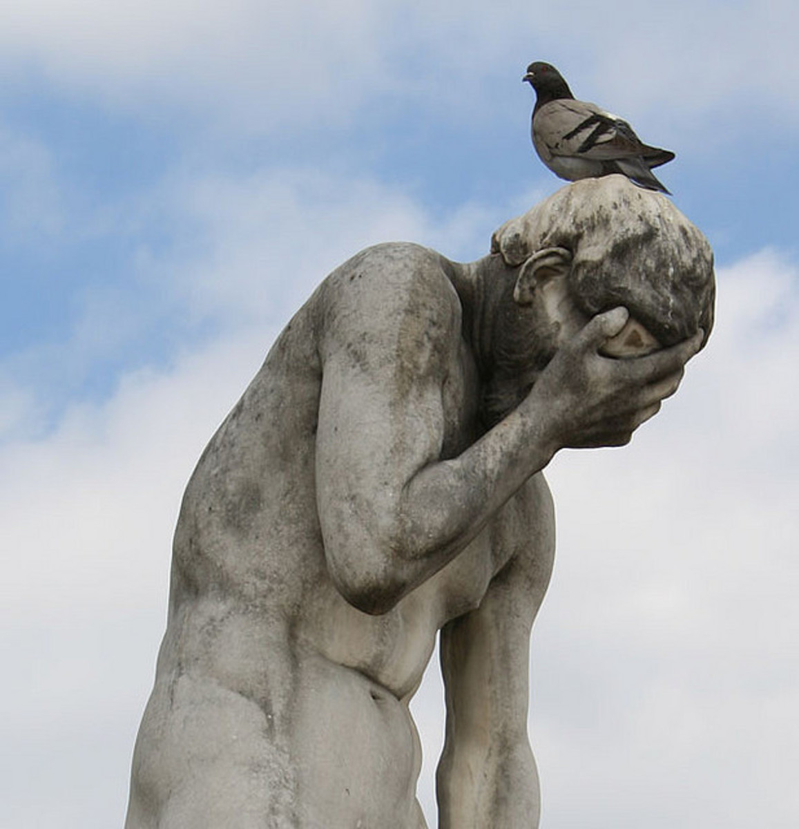 Is the pigeon there to poop on his head or listen to his troubles?  You decide.