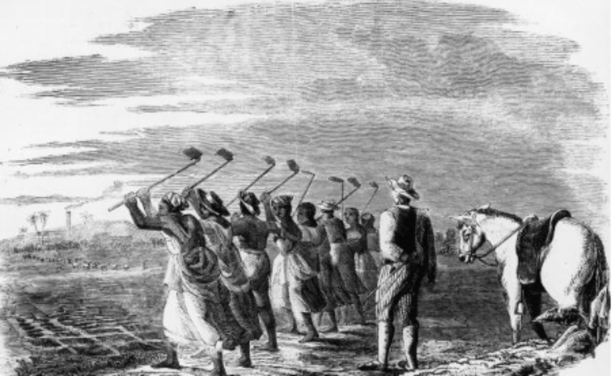 The steady sound of a hoe, pick, or plough, coupled with vibrant, pulsating, calls and responses, bolstered the weary spirits of laboring slaves and fostered the blues.