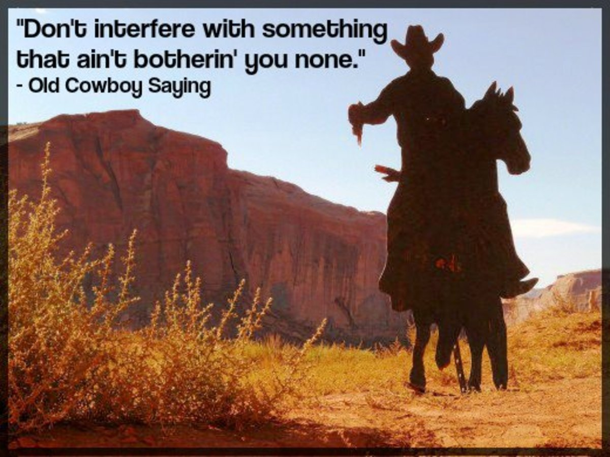 """Don't interfere with something that ain't botherin' you none."" - Old Cowboy Saying"