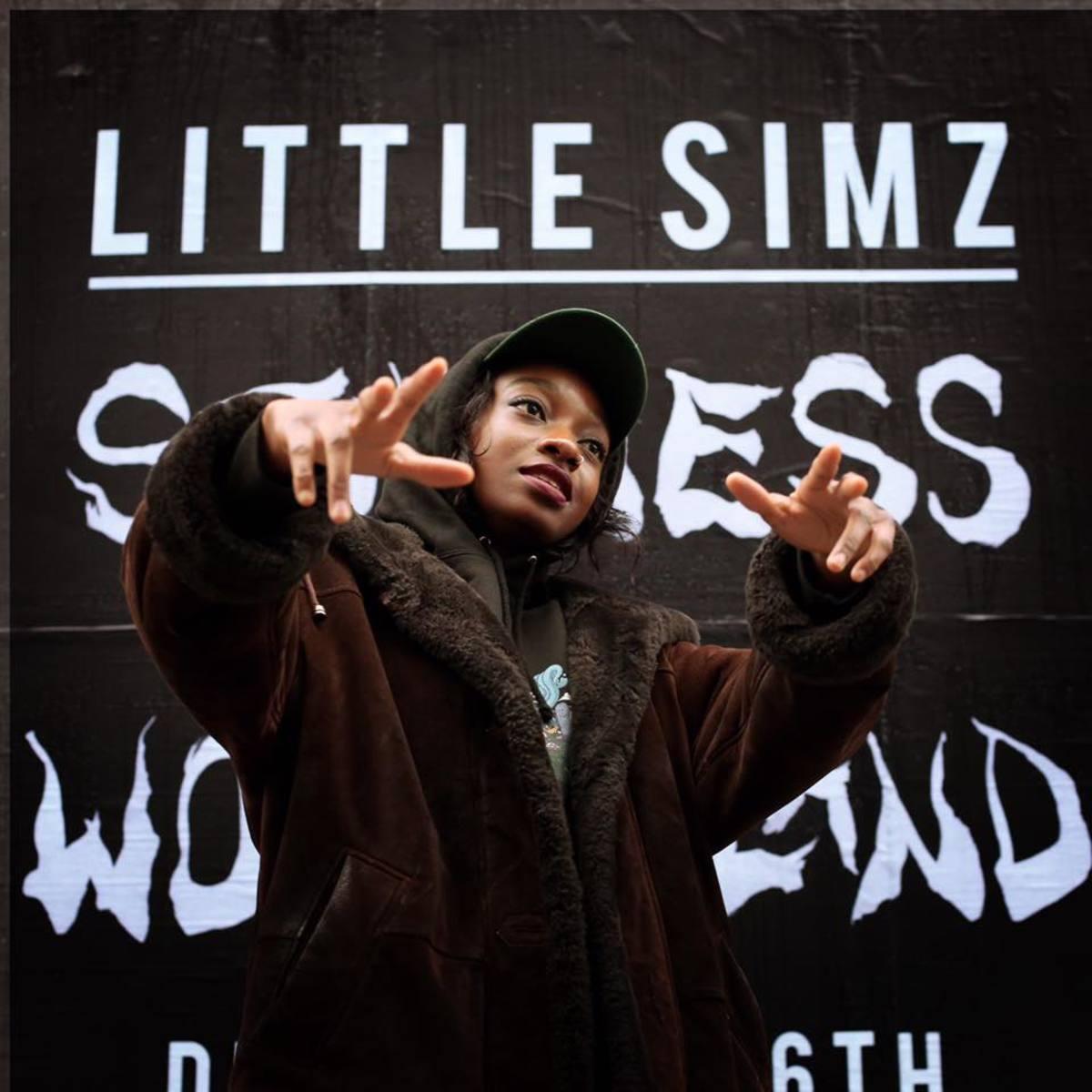review-little-simzs-album-stillness-in-wonderland