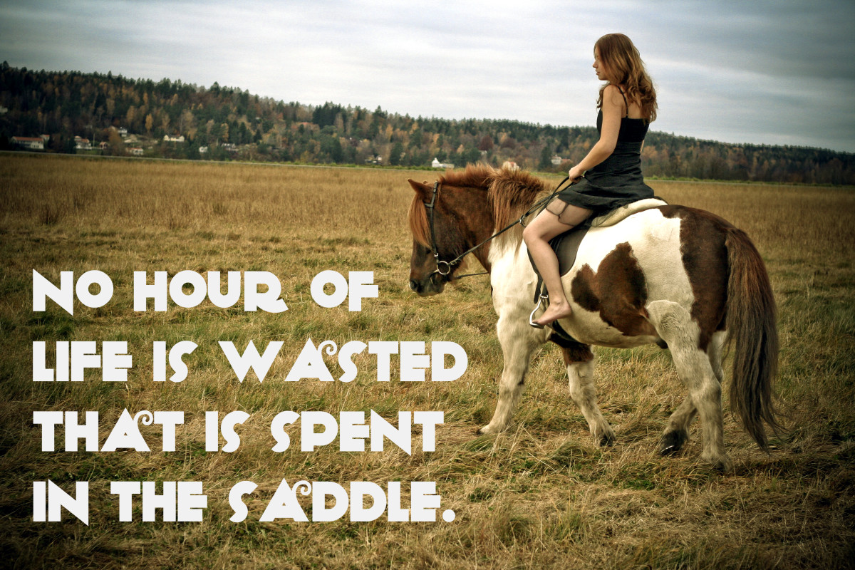 """No hour of life is wasted that is spent in the saddle."" - Winston Churchill, Prime Minister of the United Kingdom"