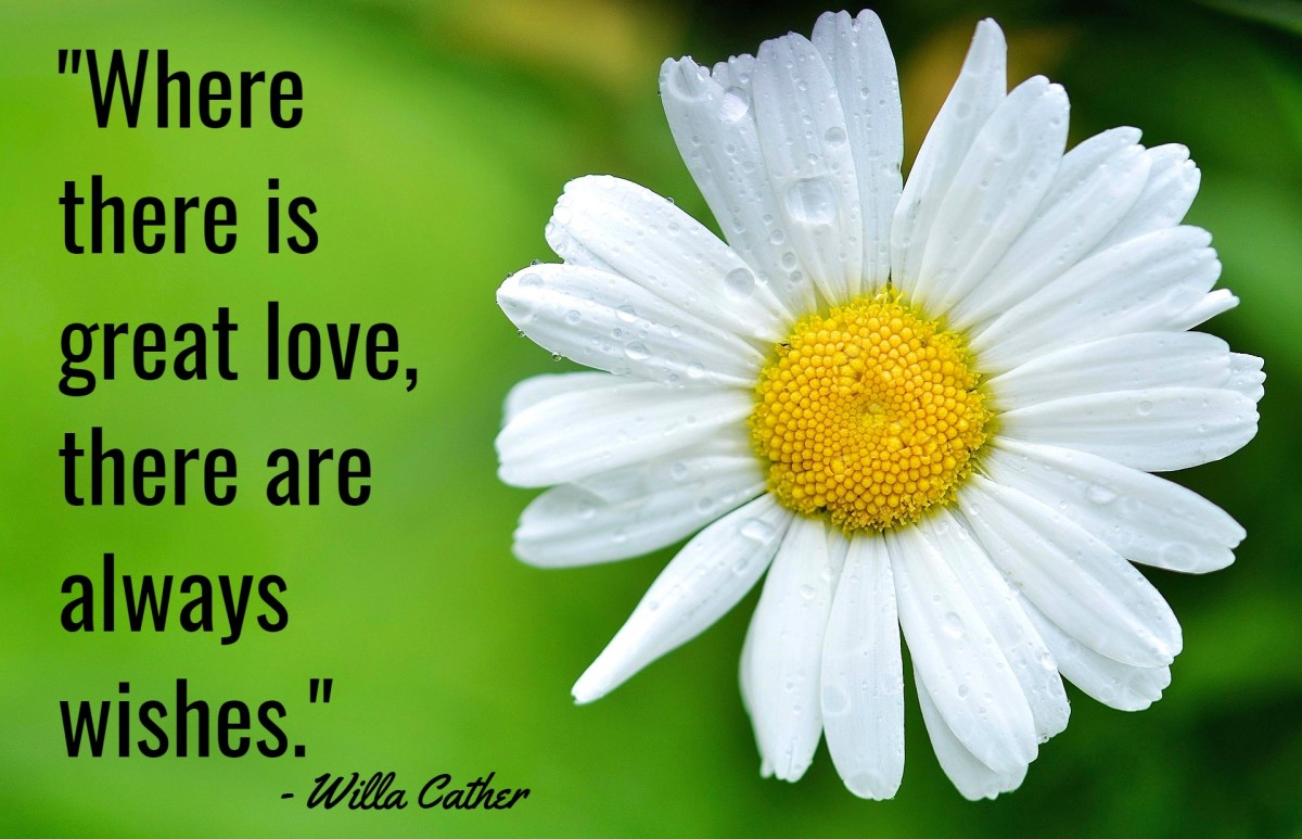 """""""Where there is love, there are always wishes."""" - Willa Cather, American writer"""