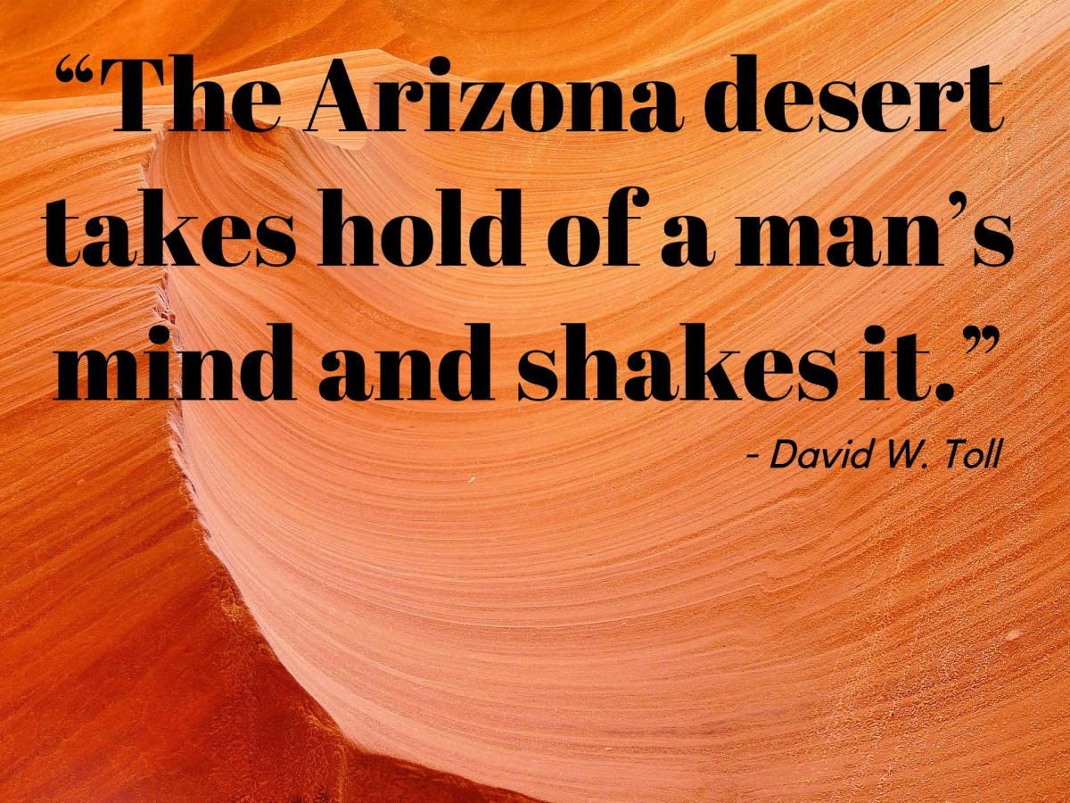 """""The Arizona desert takes hold of a man's mind and shakes it."" - David W. Toll, American journalist"