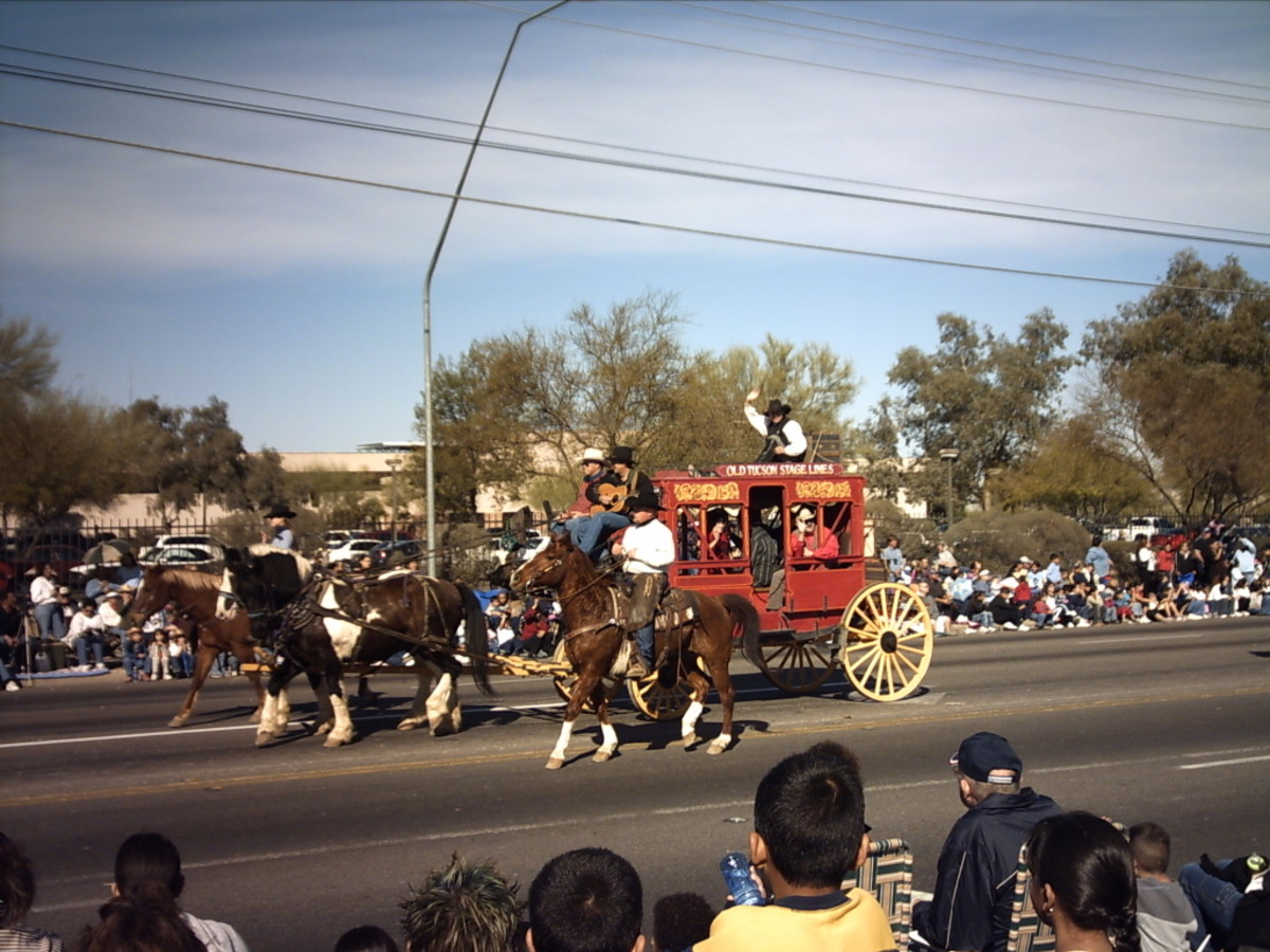 My wife and her two children get a taste of their new homeland by celebrating Tucson's Annual Fiesta de los Vaqueros Parade and Rodeo.