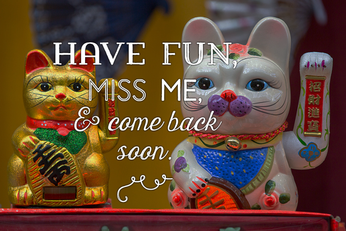 Message for a friend going abroad: Have fun, miss me, and come back soon.