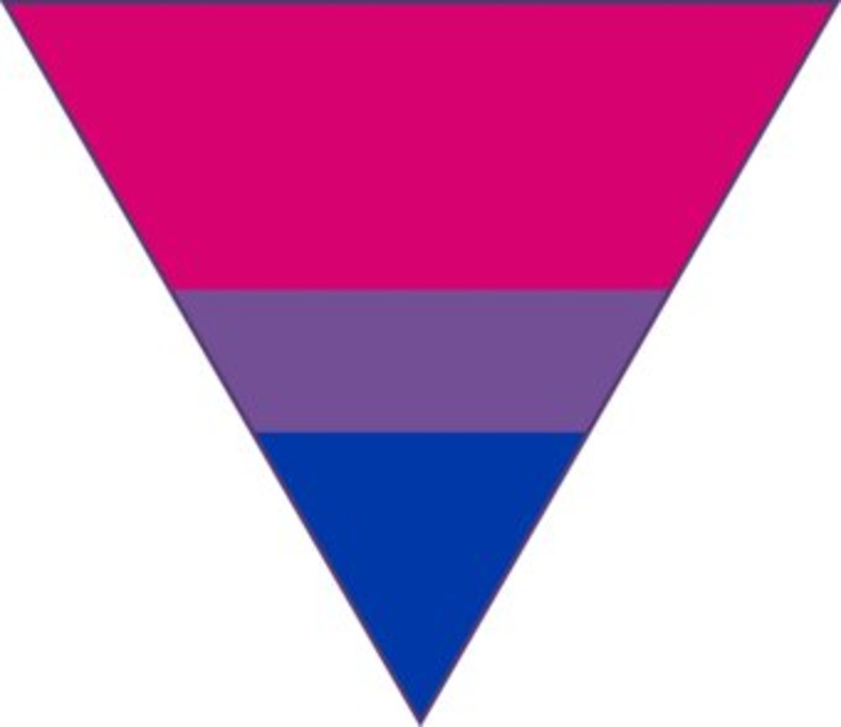 Gay. (Bisexual colours)