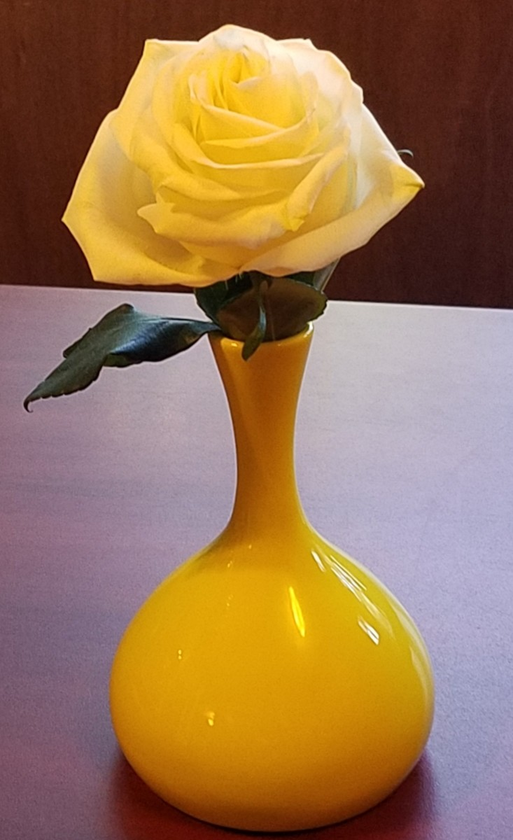 A yellow rose was left for me by my coworker at the desk where I cover for her vacation time each summer.