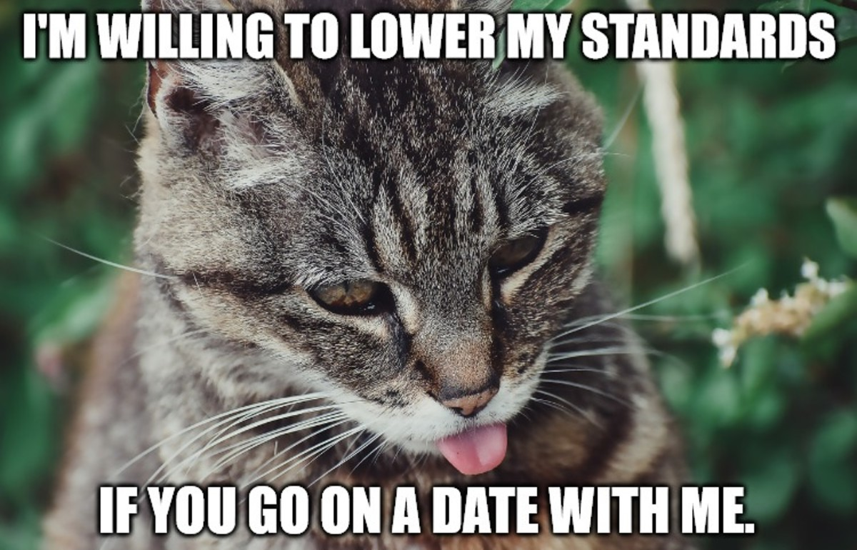 mean-and-insulting-pick-up-lines