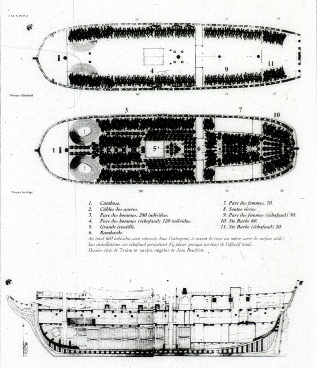 Diagramme of a slave ship. Image from Wikipedia