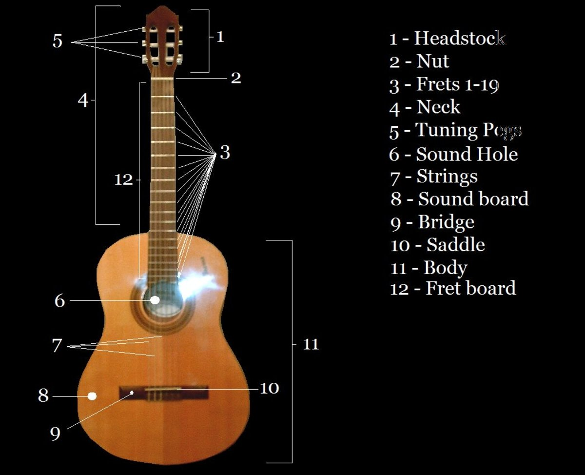 Acoustic Guitar Diagram for Reference