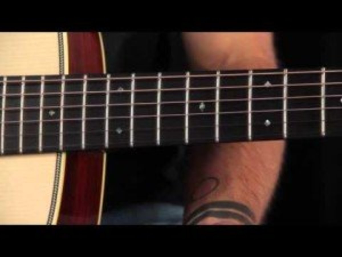 Position markers are the circles on your fretboard, in between the frets. They mark certain frets, for easy reference.