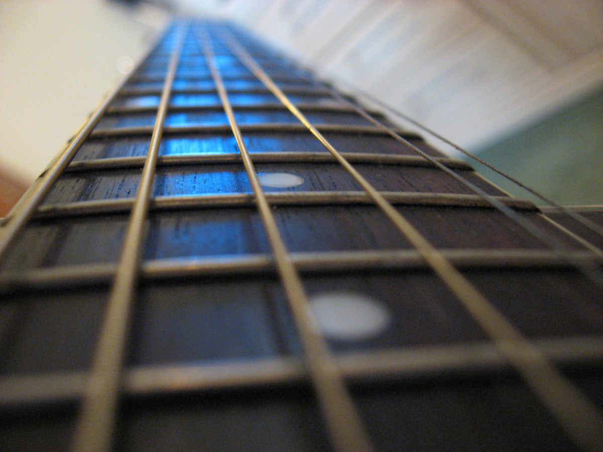 The fretboard is the long, wooden section of guitar on your guitar neck that holds your frets.