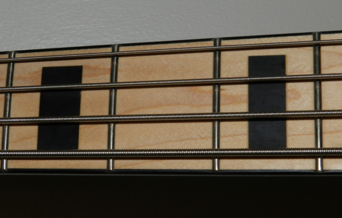 The maple fretboard with black block markers is a cool look.