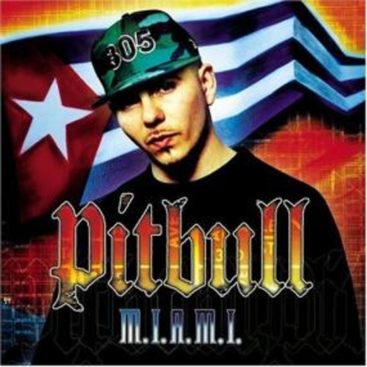 Pitbull's early albums weren't commercial successes