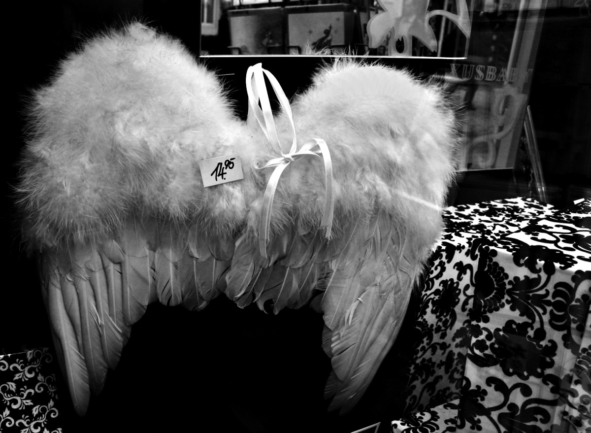 Wings in a storefront for sale -- guardian angel not included.