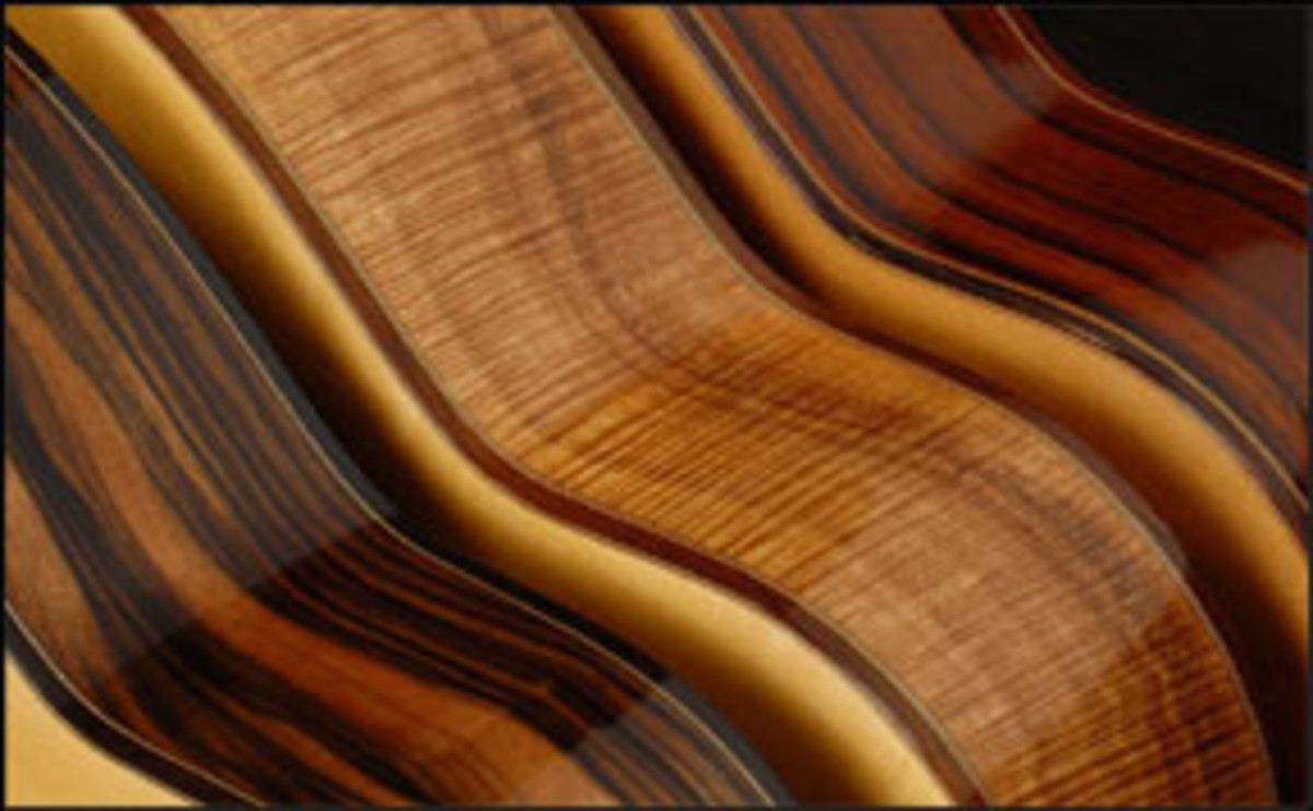 the-great-electric-guitar-tonewood-debate-solved