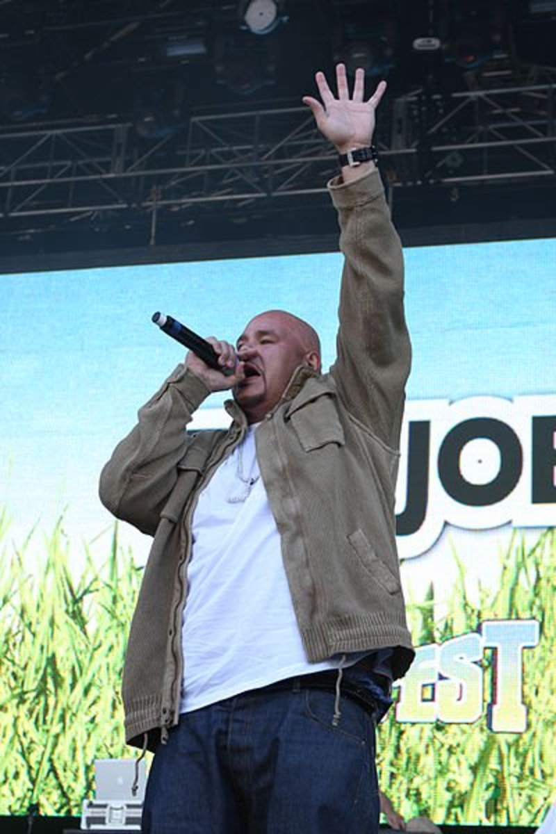 Fat Joe, rapping while avoiding paying the IRS