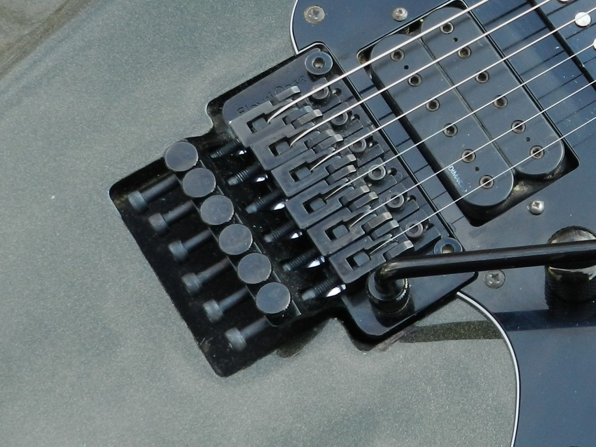 Beginners should think hard before considering a guitar with a Floyd Rose tremolo.